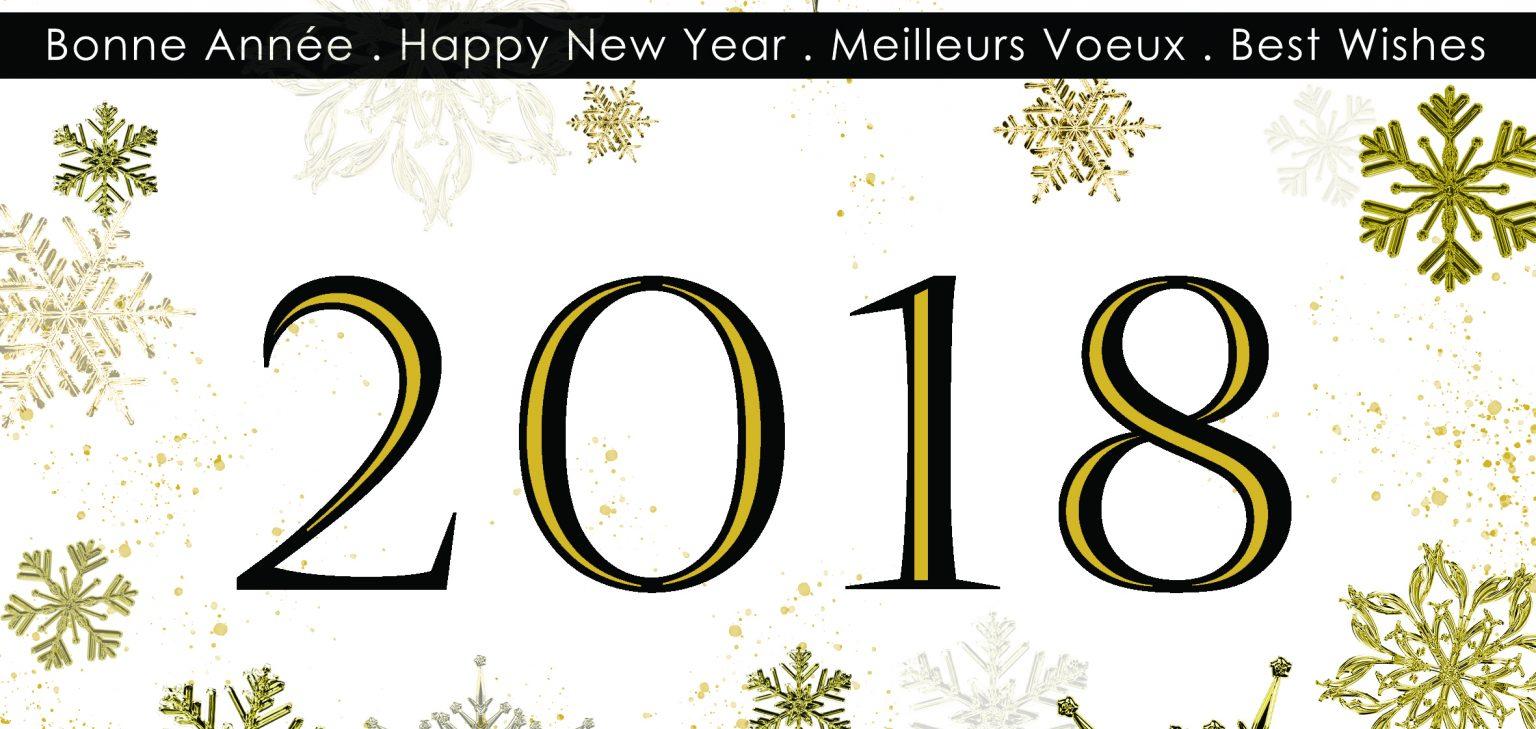 Voeux 2018 Koh I Nor